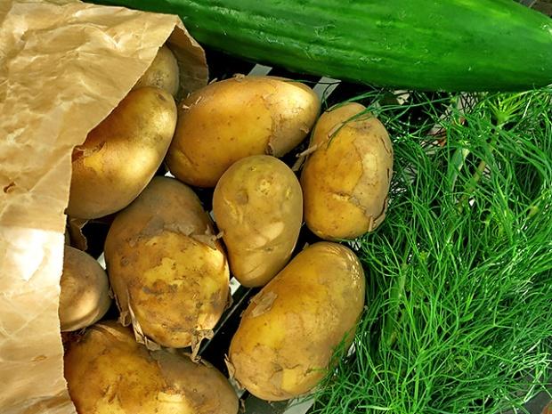 Im Juni: Gurke, Kartoffeln, Dill