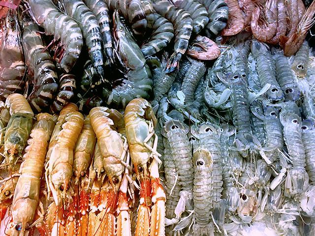 Krusten- und Schalentiere verschiedene Sorte