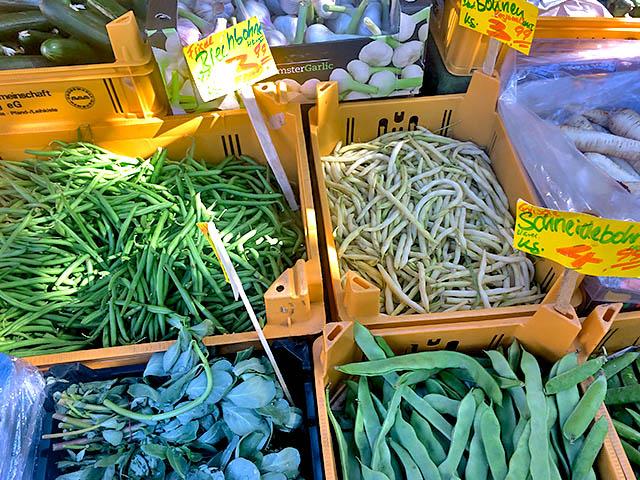 Im August gibt es frische Bohnen