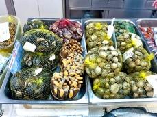 Cascais Muschel Sorten Fischmarkt