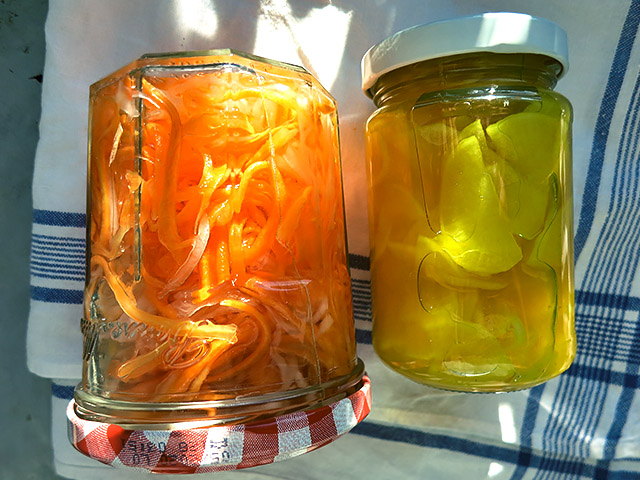 Daikon und Moehre vietnam Pickles