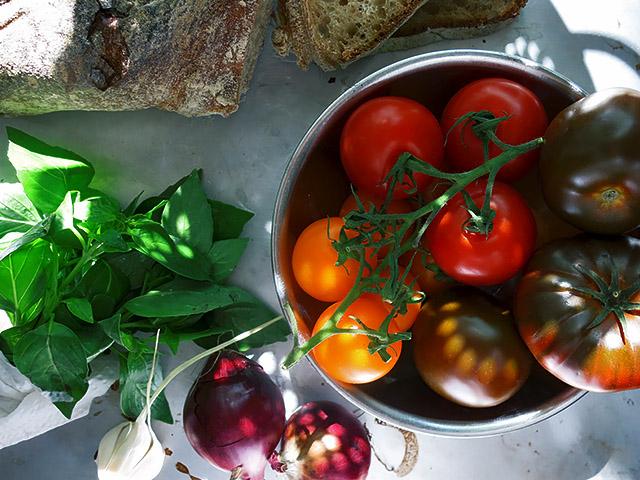 Alle Zutaten Panzanella toskanisch