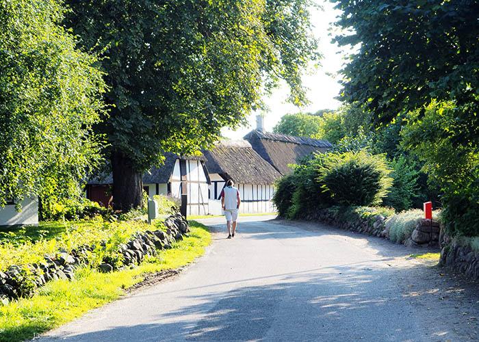 Lyø By ist ein grünes idylisches Dorf